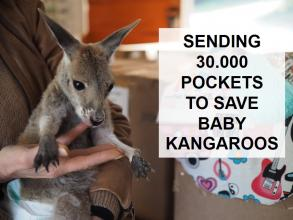 澳大利亚火灾:利斯组织并运送30000个动物育儿袋